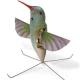 Robotic Spies: Hummingbirds, Dragonflies & Co.
